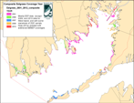 Composite map of current eelgrass distribution.