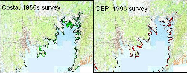 Comparison of two eelgrass surveys.