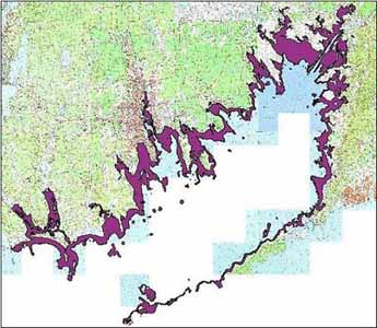 Hypothetical eelgrass distribution in Buzzards Bay circa 1600, not accounting for sea level rise.