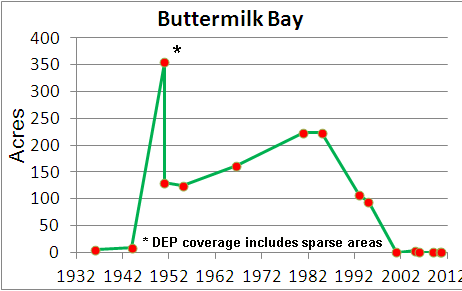 Eelgrass cover over time in Buttermilk Bay