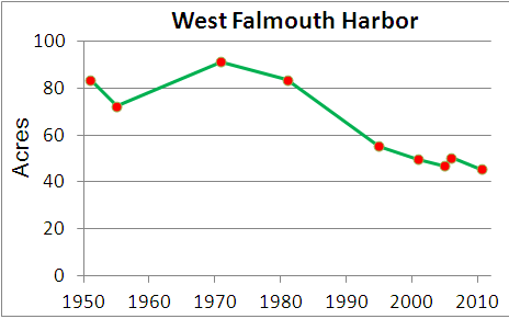 Eelgrass cover over time in West Falmouth