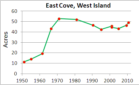 Eelgrass cover over time in West Island Cove