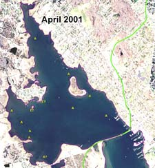 Absence of eelgrass , April 2001 aerial photograph.