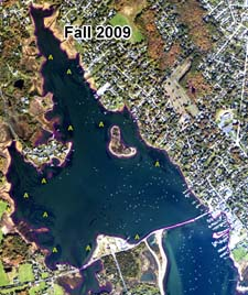 Absence of eelgrass in a NOAA fall 2009 aerial photograph.
