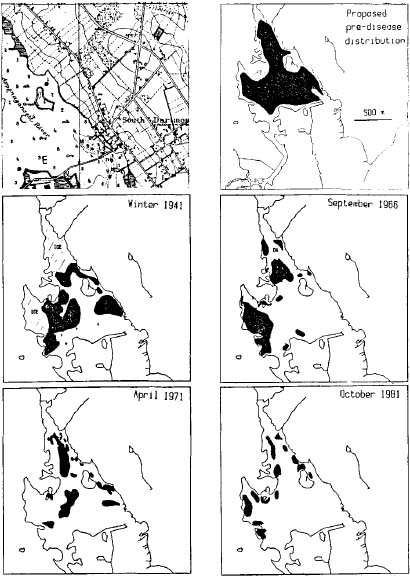 Estimated Historical changes of Apponagansett Bay eelgrass from Costa 1988a