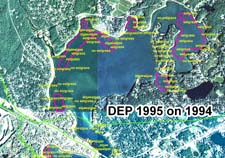 Eelgrass in Buttermilk Bay about summer 1995 as mapped by DEP, including field verification points.