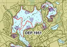 Eelgrass in Buttermilk Bay circa 1951 as mapped by DEP.