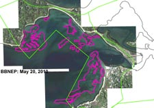Eelgrass in Megansett Harbor, estimated from May 20, 2010 imagery.