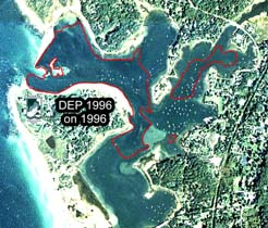 Eelgrass in West Falmouth Harbor, DEP 1996