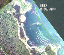 BBP estimate of eelgrass cover for 8 October 1971 image of East Cove West Island