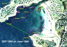Eelgrass in Wild Harbor, DEP 1995 study on June 1994 aerial photograph