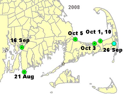 2008 Cape Cod Manatee Sightings