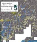 Buzzards Bay rivers and their subwatersheds.