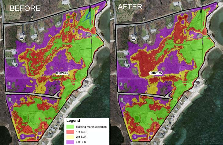 Processing of elevation data used in salt marsh expansion study.