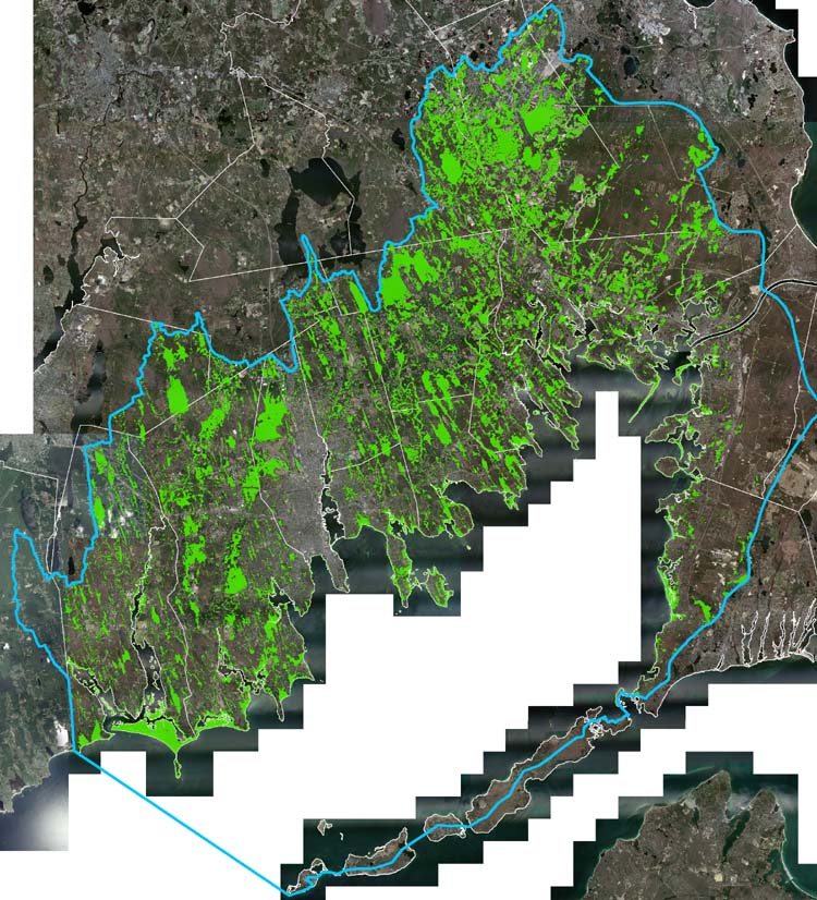 Map of wetlands in the Buzzards Bay watershed