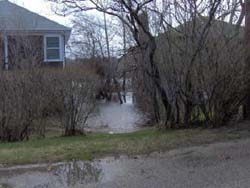 Flooding of homes along Gardner Rd. in Woods Hole.