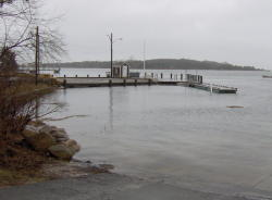 High water levels in West Falmouth Harbor, along old dock road.